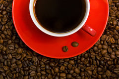 Red coffee cup on the beans. Coffee cup on the beans. Close up Stock Image