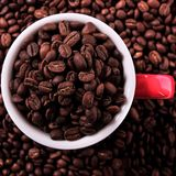 Red coffee mug filled with beans top view square Royalty Free Stock Images