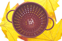 Red Colander on Vibrant Fall Leaves Royalty Free Stock Photos