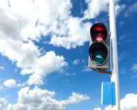Red color on the traffic light for pedestrian. Stock Photo