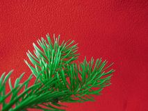 Red colored christmas background with Christmas tree branch in green. Greeting cards and holiday wishes royalty free stock images