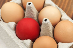 red colored Easter egg Royalty Free Stock Photos