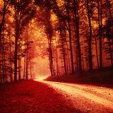 Red colored fantasy forest Royalty Free Stock Images