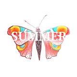 Red Colorful Butterfly with Summer Sign Stock Image