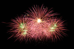 Red colorful fireworks Royalty Free Stock Photography