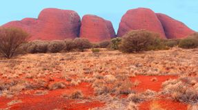 Colourful red Olgas mountains (Unesco), Australia Stock Photography