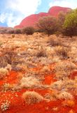 Surreal red Olgas mountains (Unesco), Uluru Kata Tjuta National Park, Australia Stock Photos