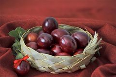 Red coloured eggs Stock Image
