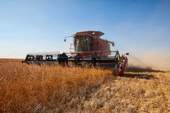 Red combine Stock Photography