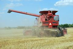 Red Combine Cutting Wheat. Red combine cuts Kansas wheat during harvest Stock Photos