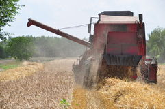 Red combine-harvester Stock Images