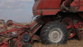 The red combine harvester rides through the field. Close-up. Details and mechanisms of the combine in operation.