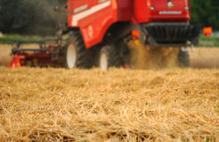 Red combine harvester stock images
