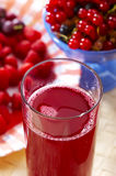 Red compote Stock Photos