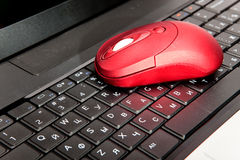 The red computer mouse. On the black keyboard royalty free stock image