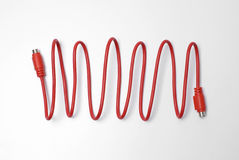 Red computer network cable. On white background Stock Image