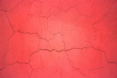 Red concrete wall, surface texture plaster background for design Royalty Free Stock Photos