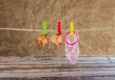 Red condom and dry rose hanging on line Royalty Free Stock Photos