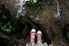 Red Converse royalty free stock images