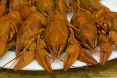 Red cooked crawfish on a plate Stock Image