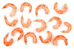 Red cooked prawn or shrimp isolated on white background. Top view. Flat lay.  Stock Images