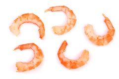 Red cooked prawn or shrimp  on white background. Top view. Flat lay.  Royalty Free Stock Photos