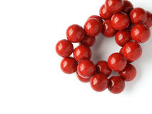 Red coral beads Stock Images