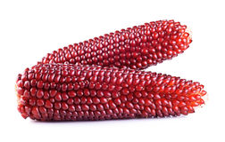 Red corn. Collection on a white background Stock Photography