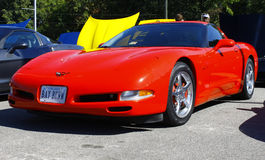 A red Corvette Royalty Free Stock Photo