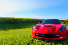 Red 2017 Corvette. Red 2017 Torch Red Corvette Next to Corn Field In Grass Royalty Free Stock Image