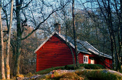 Red cottage. In the wood Royalty Free Stock Photos