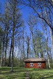 Red cottage. A little red cottage in the spring. Very common in Sweden Royalty Free Stock Photo