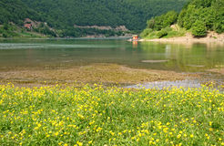 Red cottage on a floral lakeshore. Gazivoda lake is an artificial lake. It was created by building a dam on the river Ibar. Part of the lake is situated in Stock Photos