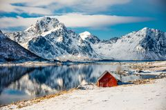 Red cottage in Lofoten, Norway. Red cottage near the water in Lofoten, Norway royalty free stock photos