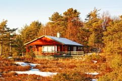 Red cottage among Norwegian spruce and pine trees in winter Royalty Free Stock Photography