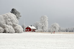Red cottage in winter Royalty Free Stock Image