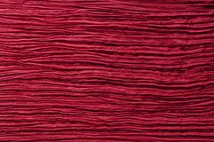 Red cotton Stock Image