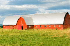 Red country barn. With an arched roof in a farm field. North Hero, Vermont Royalty Free Stock Images