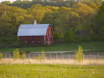 Red Country Barn. Red Barn on a Farm with trees in the background and a field in front Stock Photos