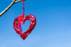 Red country wicker heart hanging from tree branch against blue sky; Valentine`s Day and love concept with copy space. Red country wicker heart hanging from tree Royalty Free Stock Photography