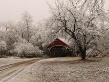 Red covered bridge among frosty trees Stock Images