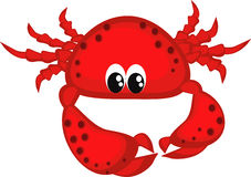 Red crab. Royalty Free Stock Images