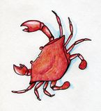 Red crab with blue shadow. Hand drawn with colored ink pen Stock Image