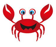 Red crab cartoon. Isolated over white background Royalty Free Stock Photography