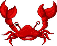 Red crab cartoon for you design Royalty Free Stock Images