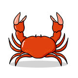 Crab illustration. Red crab cartoon; Isolated crab drawing Royalty Free Stock Image