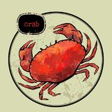 Red crab with ink watercolor style Royalty Free Stock Photo