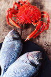 Red Crab / Steamed crab on wooden background. Delicious seafood Stock Photos