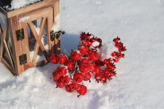 Red crabapples in snow Royalty Free Stock Image