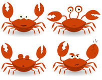 Free Red Crabs Characters Royalty Free Stock Photography - 25734817